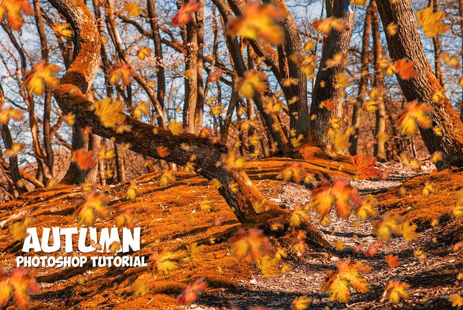 autumn season with falling leaves photoshop tutorial