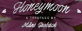 Бесплатные тонкие шрифты для элегантногодизайна