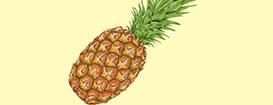 Рисуем реалистичный ананас в AdobeIllustrator