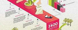 20 примеров иллюстративнойинфографики